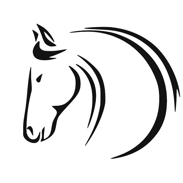 Profilová fotka Dobrovolná společnost chovatelů koní Havlíčkův Brod
